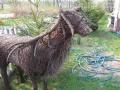 SioloBudy 2006 28